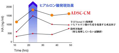 ADSC-CMのヒアルロン酸発現効果
